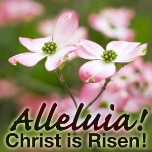 April 20 Alleluias