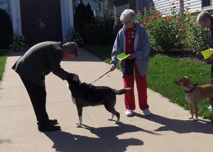 Bless Pets 2015 - 16